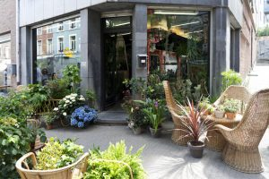 Urban Jungle Bloggers: BRUT plant shop in Brussels