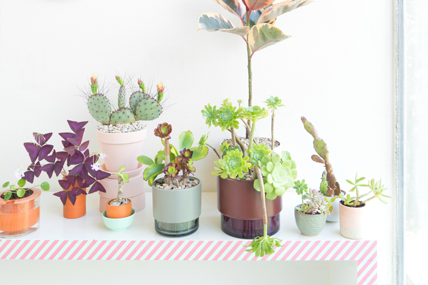 Urban Jungle Bloggers - Lucie Kaas Gro plant pot