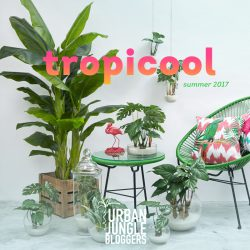 Urban Jungle Bloggers Tropicool