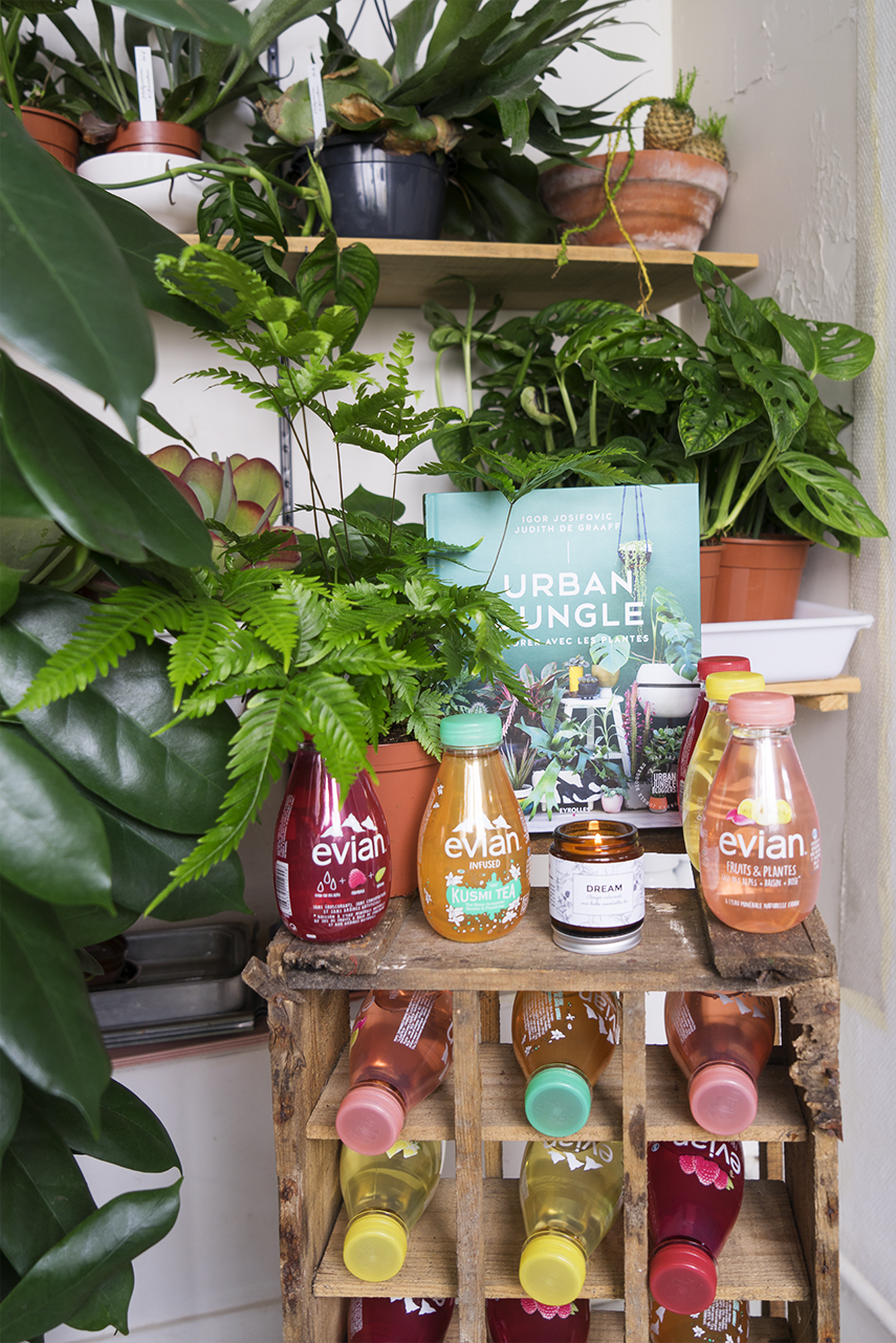 Urban jungle book launch in paris for Decoration urban jungle