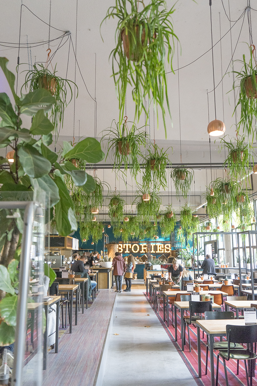 Urban Jungle Decorating Kitchen: Plant Trends From Dutch Design Week 2017