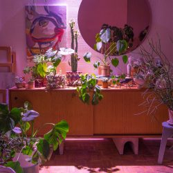 Urban Jungle Bloggers - Start something bright with Osram Opto Semiconductors