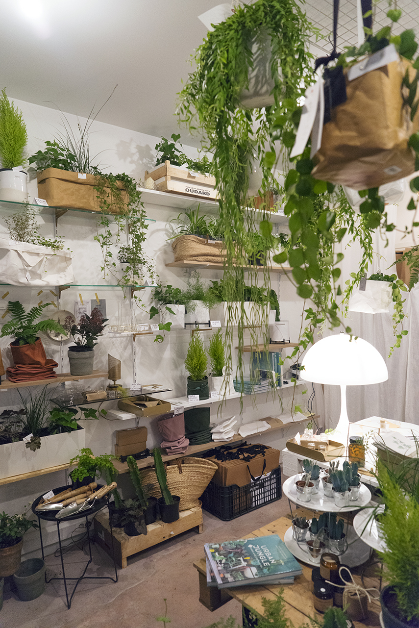 Urban Jungle Bloggers - Jardinière Sauvage pop-up shop in Paris #urbanjunglebloggers
