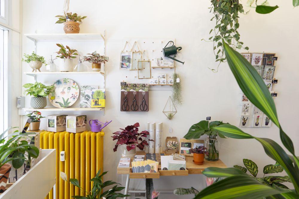 Urban Jungle Bloggers - Wild Milano plant shop in Milan #urbanjunglebloggers