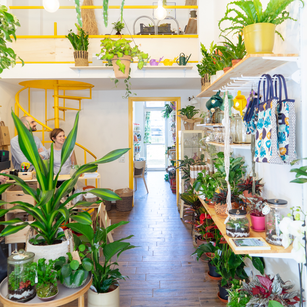 Urban Jungle Bloggers - Wild Milano plant shop in Milan #urbanjunglebloggers