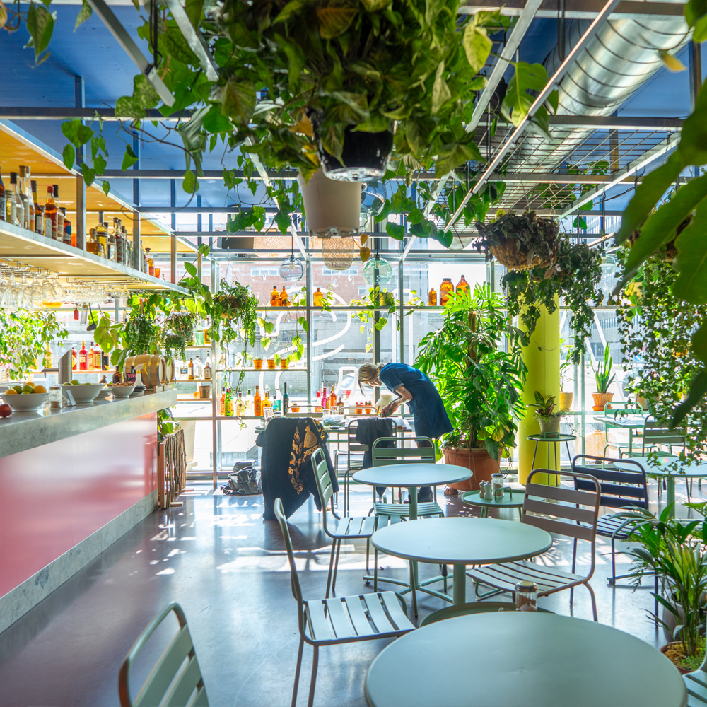 Urban Jungle Bloggers - Botanical Hotspots in Zurich, Switzerland #urbanjunglebloggers