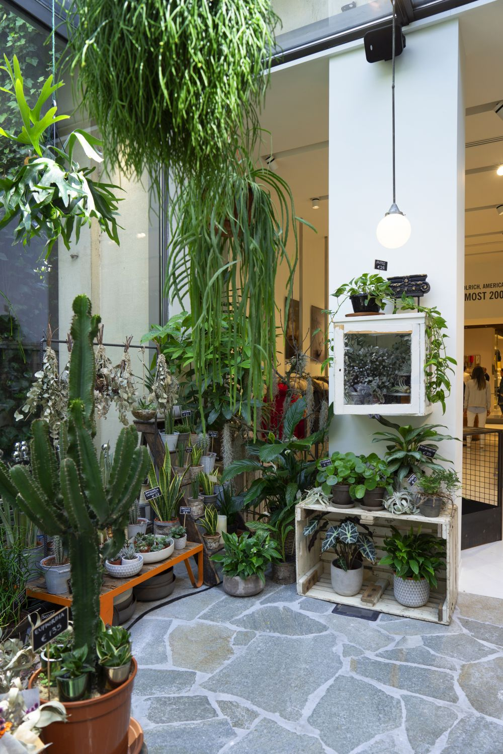 Urban Jungle Bloggers - Green Fingers plant shop at Woolrich in Milan #urbanjunglebloggers