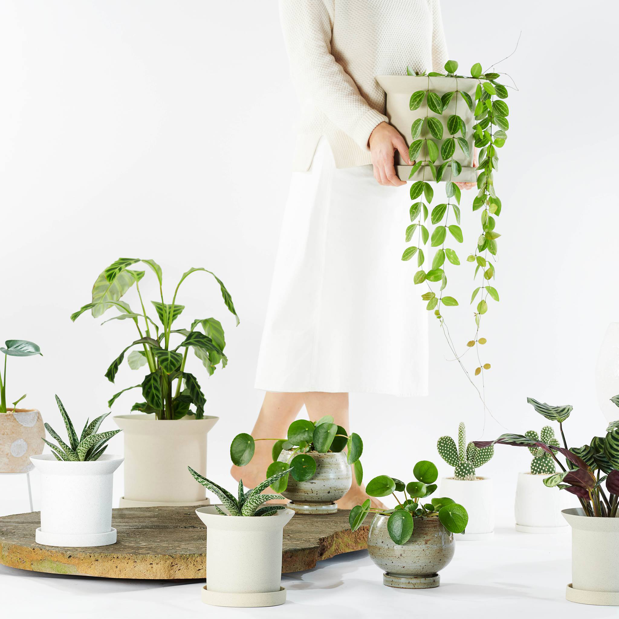 Urban Jungle Bloggers - Cool Plant Pots #urbanjunglebloggers