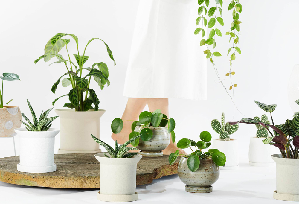 Urban Jungle Bloggers - Cool Plant Pots #urbanjunglebloggers