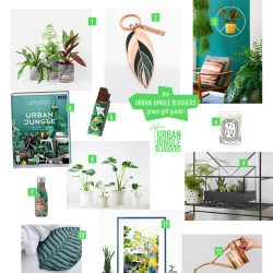 Urban Jungle Bloggers Green Gift Guide 2018 #urbanjunglebloggers #giftguide