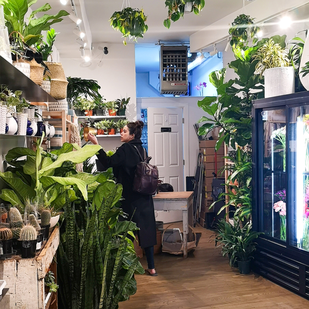 Urban Jungle Bloggers in NYC #urbanjunglebloggers #hotspot #nyc