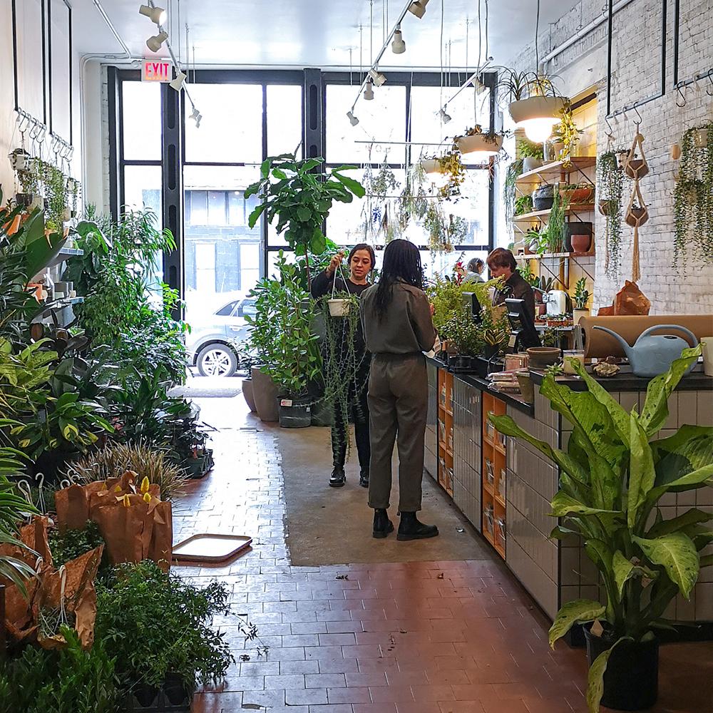 Green Hotspots in New York City
