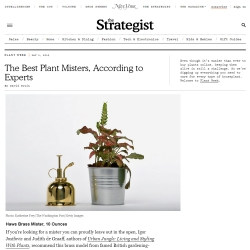 Urban Jungle Bloggers on NY Mag The Strategist