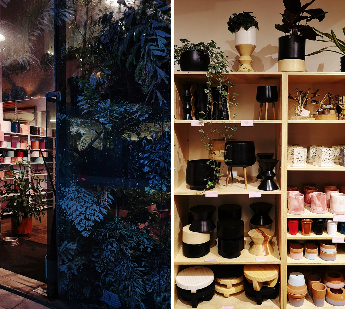 Urban Jungle Bloggers at Selvvva Sao Paulo Brazil