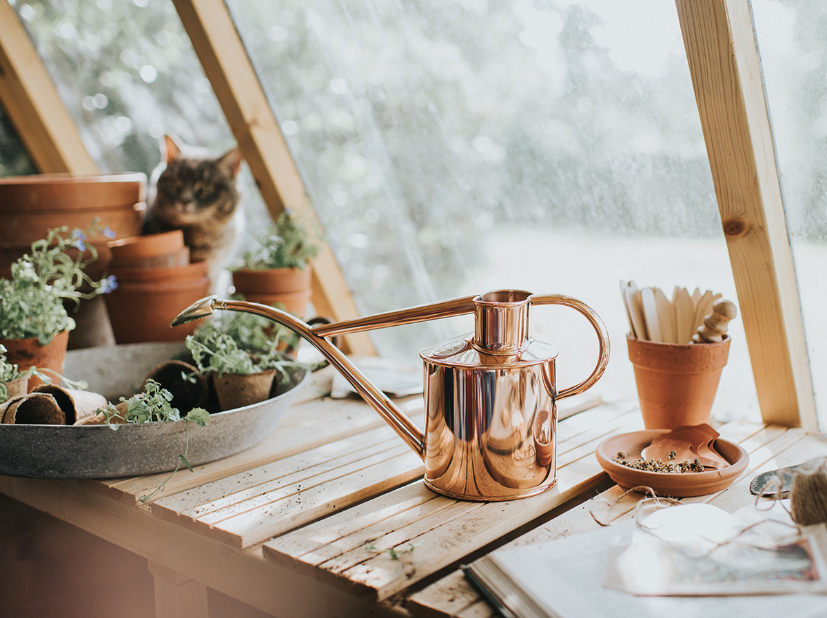Urban Jungle Bloggers - Green Gift Guide 2019 - Haws Watering can #urbanjunglebloggers