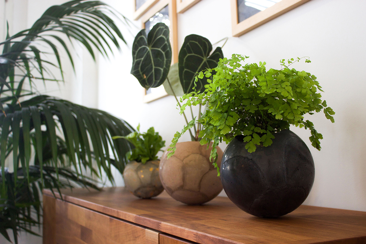 Urban Jungle Bloggers - Dirty Roots Berlin #urbanjunglebloggers