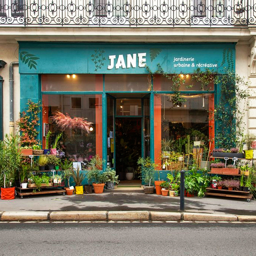 Plant Shopping at Jane Jardinerie