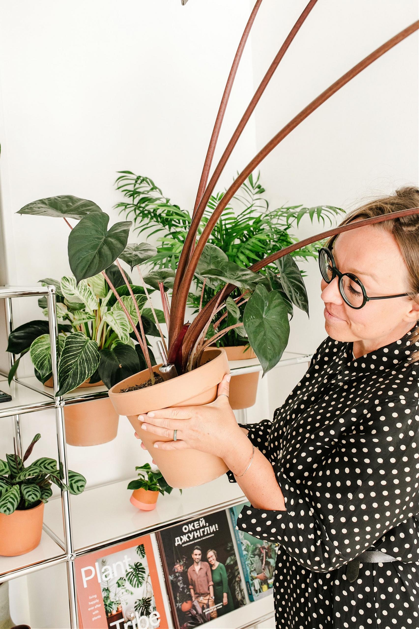Urban Jungle Bloggers - USM Haller World of plants #urbanjunglebloggers